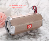 Loa bluetooth HDY – G25